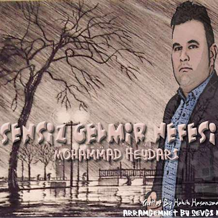 Mohammad Heydari Sensiz Gelmir Nefesim Cover Music fa.com دانلود آهنگ سنسیز گلمیر نفسیم از محمد حیدری