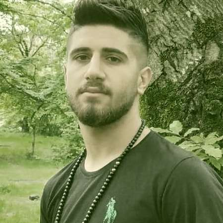 Ali Hamidi Teni Divaneme music fa.com دانلود آهنگ تنی دیوانمه علی حمیدی