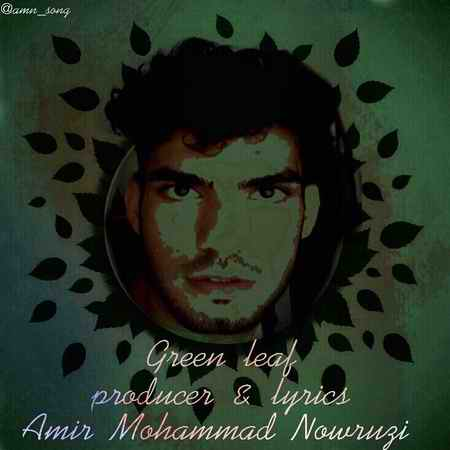 Amir Mohammad Nowrouzi Barge Sabz Cpver Music fa.com دانلود آهنگ امیر محمد نوروزی برگ سبز