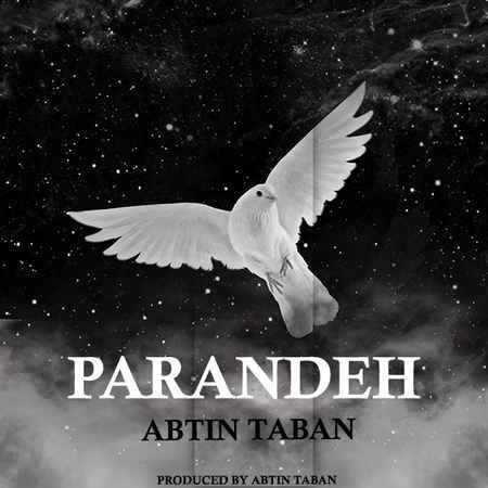 Abtin Taban Parande Cover Music fa.com دانلود آهنگ آبتین تابان پرنده