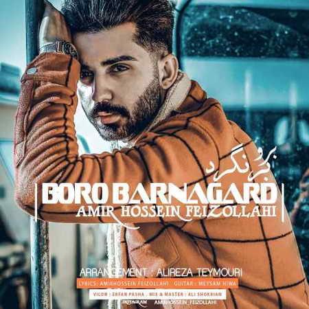 Amir Hossein Feizollahi Boro Barnagard Music fa.com دانلود آهنگ امیرحسین فیض الهی برو برنگرد