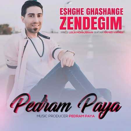 Pedram Paya Eshghe Ghashange Zedegim Music fa.com  دانلود آهنگ پدرام پایا عشق قشنگ زندگیم