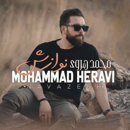 Mohammad Heravi Navazesh Music fa.com دانلود آهنگ محمد هروی نوازش