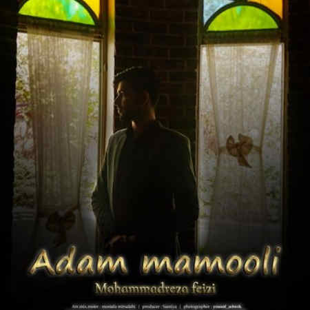 Mohammadreza Feyzi Adame Mamooli Music fa.com دانلود آهنگ محمدرضا فیضی آدم معمولی