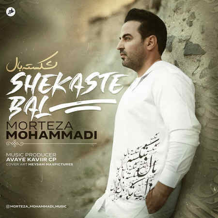Morteza Mohammadi Shekaste Bal Music fa.com دانلود آهنگ مرتضی محمدی شکسته بال