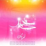 دانلود آهنگ علی روحانی تبریک