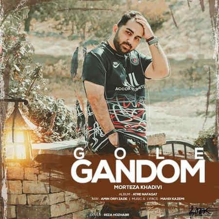 Morteza Khadivi Gole Gandom Music fa.com دانلود آهنگ مرتضی خدیوی گل گندم